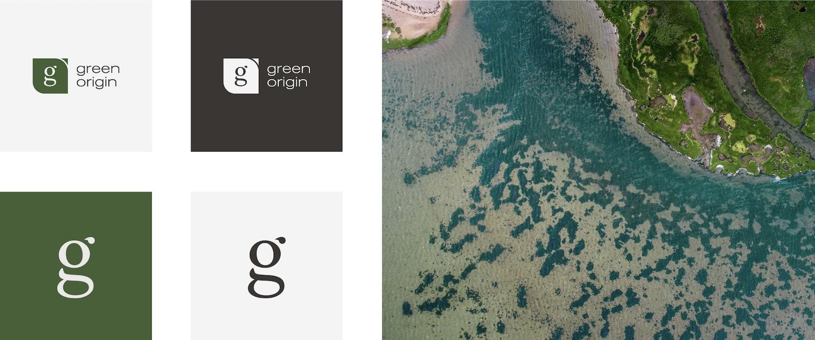 Logo pour le client Green Origin - Tapat Creative Digital Agency